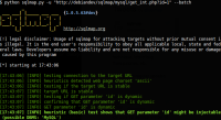 自动化注入工具Sqlmap官方文档精简说明1.0